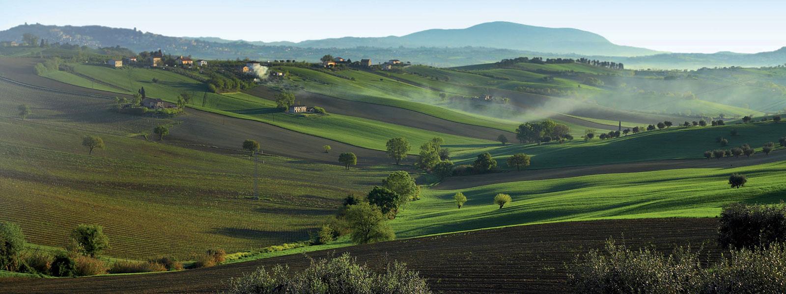 BORSA del TURISMO DEL CENTRO  ITALIA – MULA